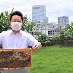 養蜂と野菜栽培